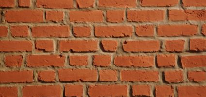Non temete i muri... se non riuscirete a scavalcarli, potrete abbatterli...